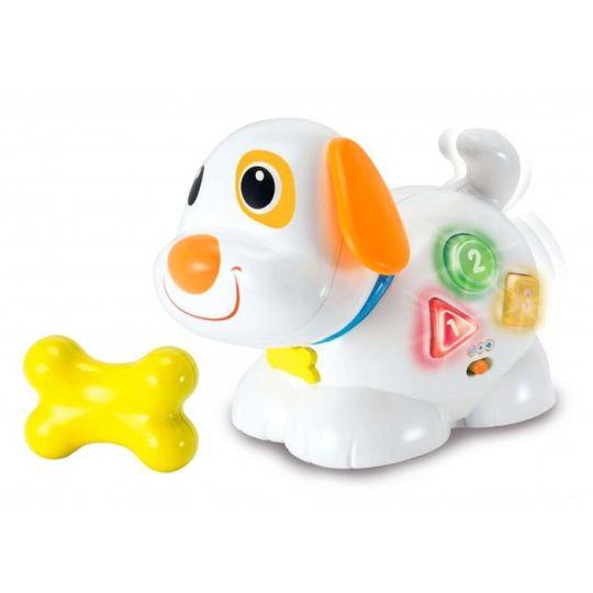 Winfun- Fun and Playful Puppy